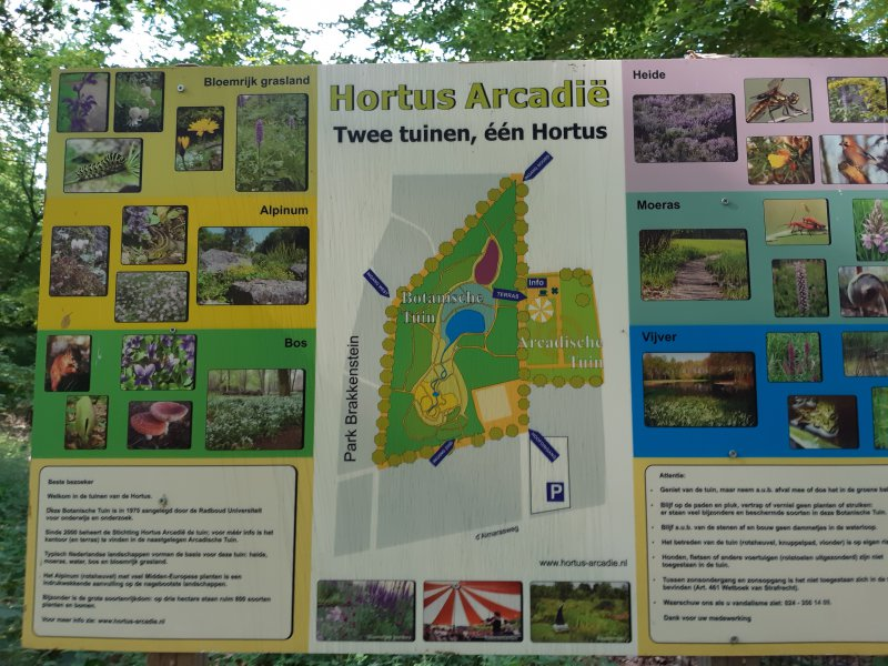 5-Hortus-Arcadia-Brakkenstein